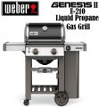 Weber Genesis II E-210 Black Liquid Propane Gas Outdoor Grill