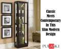 Pulaski Dark Chocolate Cherry Clean Contemporary Mirrored Back Curio With Halogen Lighting